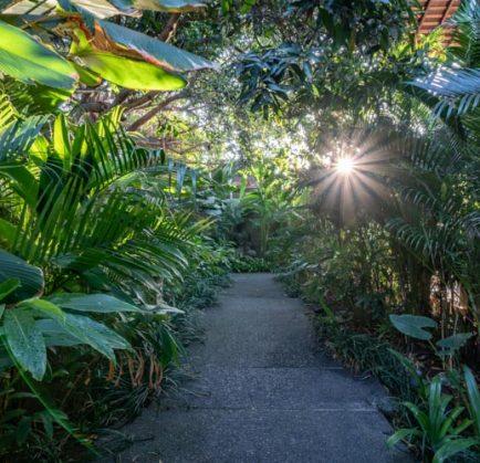 Top 5 Things to Do in Kerobokan
